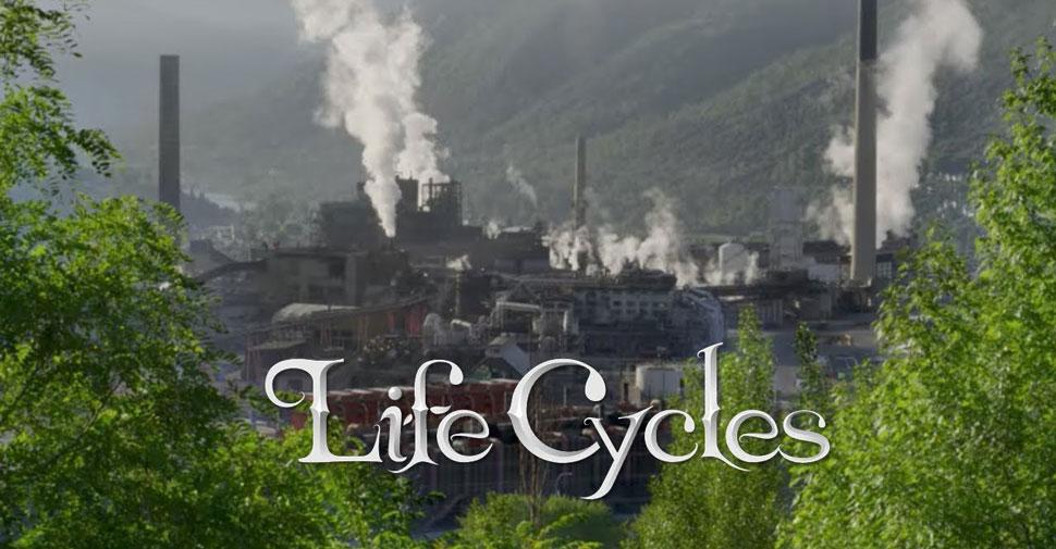 Film Life Cycles