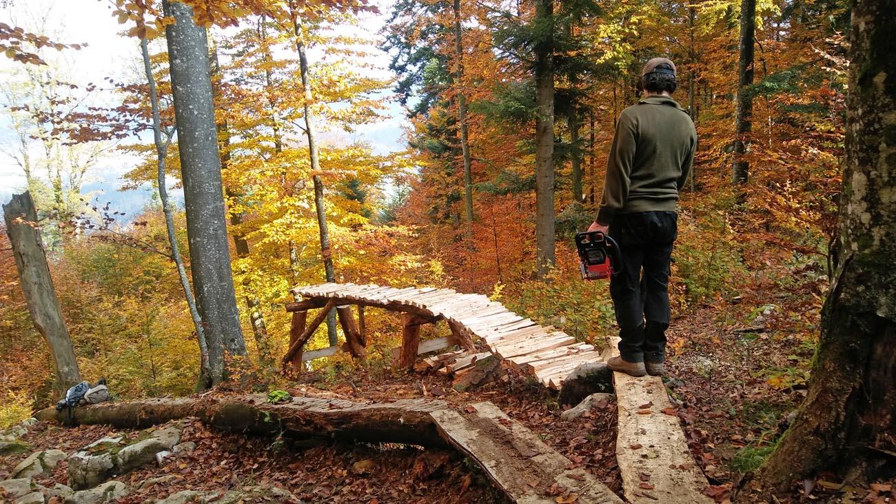 Igor Kaligarič, MTB trail center Kočevje, Livoldska