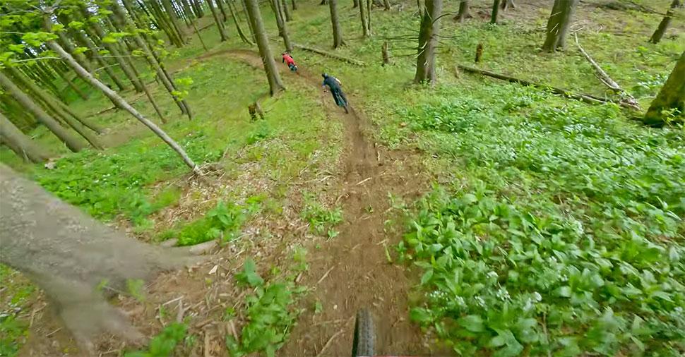 javor trails